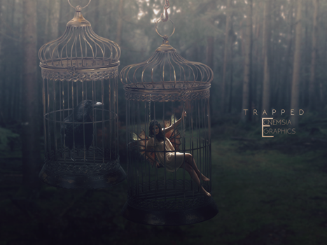 Trapped by ecnemsia