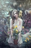 The Garden by EmilySoto