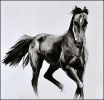 Mixed media- Horse by Ennete