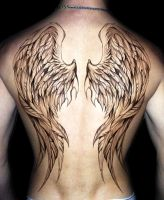 Wing Design (Drawing) by Lucky978