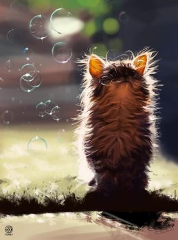 Cat color and light study by CatherineSteuer