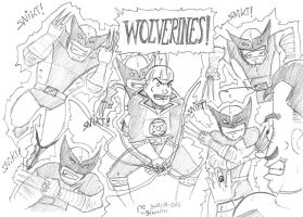 DSC 24June2010 Wolverines by theEyZmaster