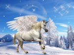SNOW PEGASUS by Aim4Beauty