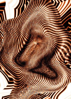 Tigerskin Wave by androgynous