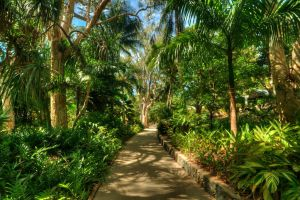 Hamilton Island Walkway by DanielleMiner