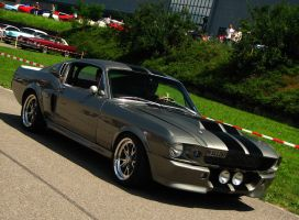 hello eleanore by AmericanMuscle