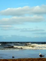 The Sea 3 by flohannes