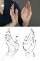 Hands practice. by popze