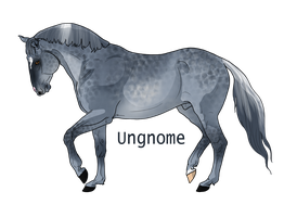Dapple Grey Andalusian by EdithSparrow