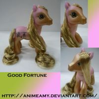Kanji Pony Good Fortune by AnimeAmy