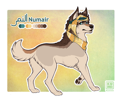 Numair Ref Sheet by Kumilch