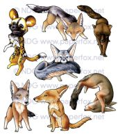 Family Canidae Sticker Set 2 by LastMorbidRose