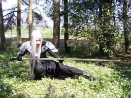 Sephiroth Cosplay by 14th-division