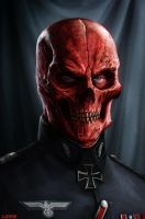 Red Skull by DanLuVisiArt