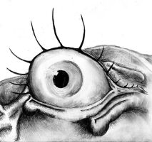 The eye of the beholder by Alzer81