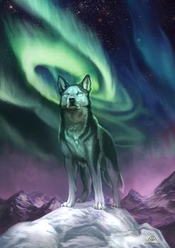 Nightsky - Siberian Husky Charity by AlectorFencer