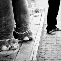 Foot styles by siddhartha19