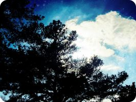 Nothing but a wintery sky by x--photographygirl