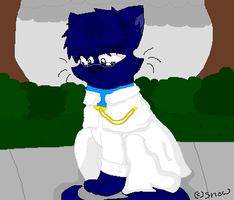 Uryu kitty. by daddysgirl554