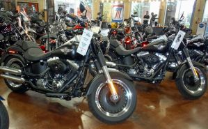Two 2014 H-D flstfb Fat Boy Lo's  for Laura by Caveman1a