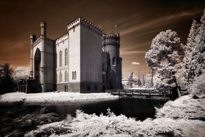 Castle in Kornik by www-locha-pl