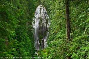 ::: Proxy Falls ::: by La-Vita-a-Bella