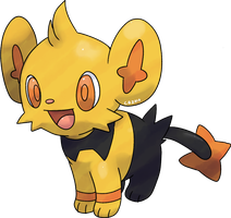 Shiny Shinx by Pand-ASS