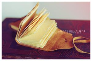 Book Binding by Nezumi-chuu