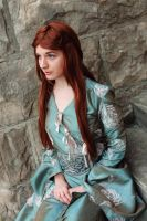 Princess of Winterfell 5 by EvieE-Cosplay