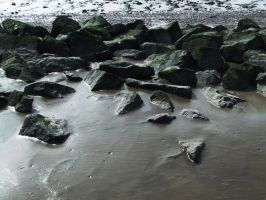Rocks on the Shore by panthera-lee