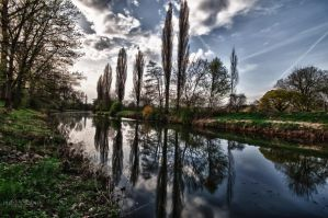 Spring is in the air 01 HDR by Creative--Dragon