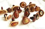 Wooden rings with natural Baltic amber by AmberSculpture
