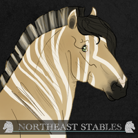 1244 ES Nu'east by NorthEast-Stables