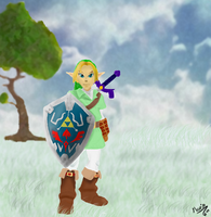 Adult Link~ by Mariecolo