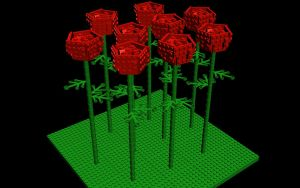 Red roses by chakotay02