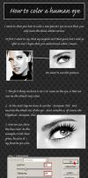 Coloring Human Eyes Tutorial by LovelyNearly