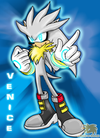 Venice::The::Hedgehog by SpyxedDemon