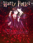 Harry Potter: Destiny by muffin-mixer