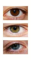 Eye Triptych by photographer-amymay