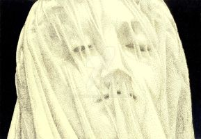 Veiled Face by Scribe1969
