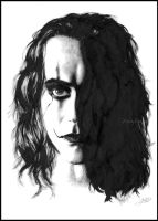 The Crow by Zindy