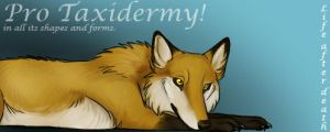 Pro taxidermy banner by CunningFox