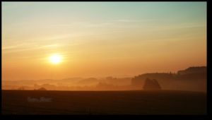 this morning... by CelticCari