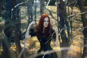 Ophelia. Northern Fire by RavenaJuly