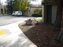 De Anza Secrets: sit by AmaltheaTwin