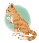 Orange Kitty by CrystallineColey