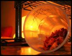 rest in glass.. by tinylittletyna