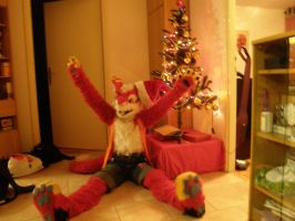 Fluffy's x-mas by lorduria