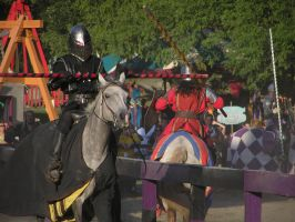 Labor Day Joust 2 by TheMightyQuinn