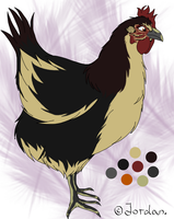 Chicken character by JordanMireldis